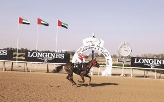 الصورة: الصورة: «زهور» لرئيس الدولة تتألق في افتتاح موسم سباقات مضمار «الشارقة لونجين»
