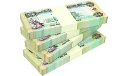 الصورة: الصورة: إلزام سيدة بردّ مليون درهم لطليقها
