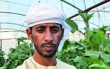 الصورة: الصورة: زيادة دعم المزارعين والتوسع في المحاصيل الاستراتيجية