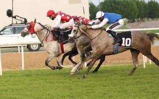 الصورة: الصورة: «مجيب» بطل الخيول المبتدئة  بمضمار أبوظبي