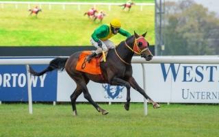 الصورة: الصورة: «دراجون» بطل كأس رئيس الدولة للخيول بوارسو