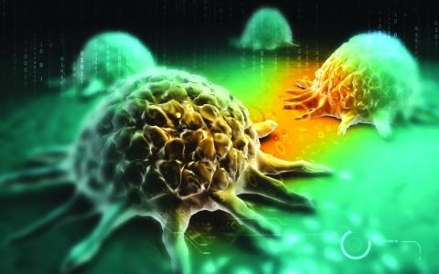 الصورة: الصورة: دراسة تكشف السبب الرئيسي لتطور السرطان