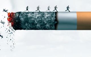 الصورة: الصورة: التبغ يعمّق جراح العالم الصحية والاقتصادية