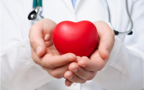 الصورة: الصورة: أوقات الوجبات مرتبطة بمخاطر القلب لدى النساء