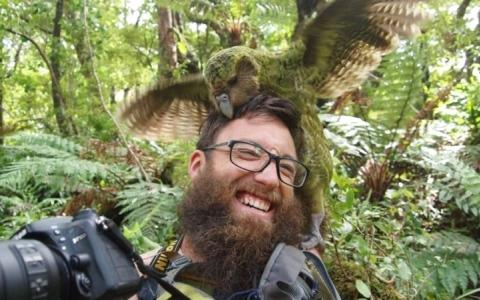 الصورة: الصورة: «ببغاء» يفوز بقلوب النيوزيلنديين للعام الثاني