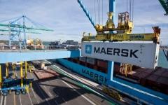 الصورة: الصورة: أكبر شركة شحن بحري في العالم تتعافى بأسرع من المتوقع