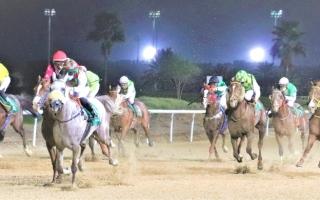 الصورة: الصورة: 490 ألف درهم جوائز ثالث سباقات مضمار العين