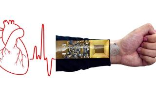 الصورة: الصورة: جلد إلكتروني لمراقبة دقات القلب وقياس حرارة الجسم
