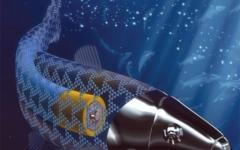 الصورة: الصورة: سمكة روبوتية مجهرية لإيصال الأدوية داخل جسم الإنسان