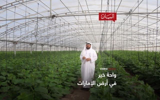 الصورة: الصورة: واحة الخير في أرض الإمارات