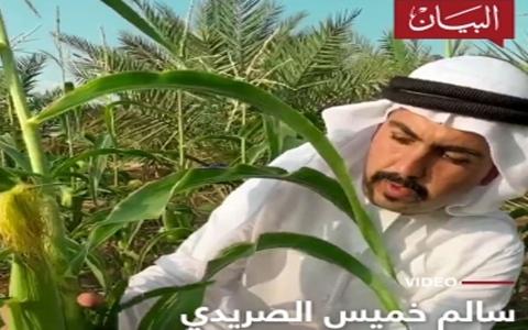الصورة: الصورة: من خير الإمارات