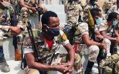 الصورة: الصورة: الصراع في إثيوبيا قد يتحول إلى حرب عصابات