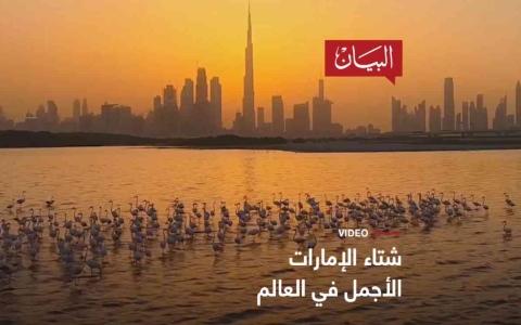 الصورة: الصورة: شتاء الإمارات الأجمل في العالم