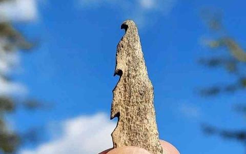 الصورة: الصورة: أسلحة عظمية تعود لـ10 آلاف عام