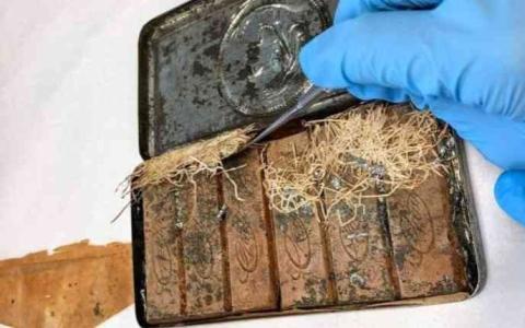 الصورة: الصورة: اكتشاف ألواح شوكولاته تعود إلى 120 عاماً