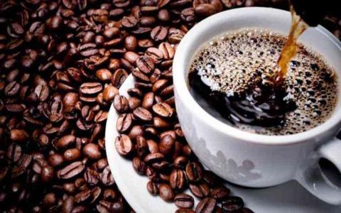 الصورة: الصورة: فكرة مجنونة.. يشترون قهوة بـ50 ألف جنيه مصري