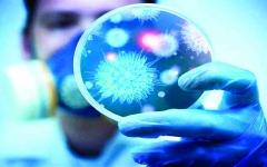 الصورة: الصورة: الإمارات تنجح في تحديد تسلسل جينوم فيروس كورونا