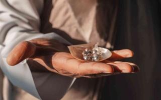 الصورة: الصورة: مزرعة اللؤلؤ  جوهرة رأس الخيمة