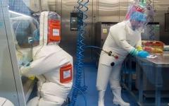 الصورة: الصورة: الصين تحذف معلومات مهمة حول منشأ فيروس كورونا