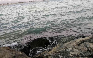 الصورة: الصورة: مقولة يرددها الصيادون.. «الصبي يصبح رجلاً عندما يتذوق ملح البحر»