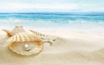 الصورة: الصورة: صيد اللؤلؤ وحكايات البحر يجذبان رواد مهرجان زايد التراثي