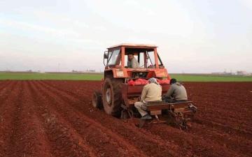 الصورة: الصورة: الجفاف يهدد سوريا والشباب يهجرون مدنهم