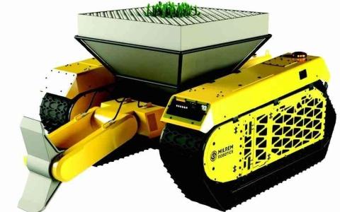 الصورة: الصورة: روبوتات تزرع غابات