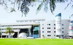 الصورة: الصورة: جمارك دبي تنجز 16 مليون معاملة جمركية في  2020 بنمو 23 %