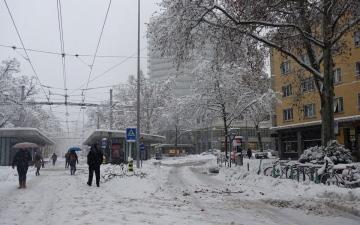 الصورة: الصورة: الأغزر منذ 20 عاماً.. الثلوج تتسبب بوفاة شخصين في سويسرا