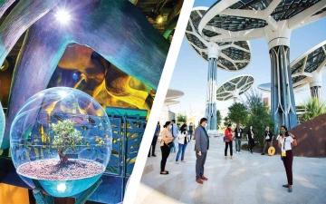 الصورة: الصورة: دبي تبدأ الإبهار.. «إكسبو » يفتتح جناح الاستدامة لجمهور الإمارات 22 يناير