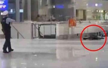 الصورة: الصورة: الشرطة الألمانية تطلق النار على مسلح في مطار فرانكفورت الدولي