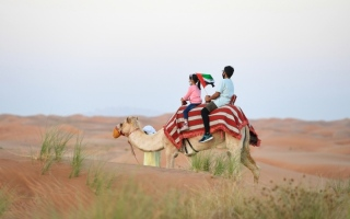 الصورة: الصورة: واحة البداير صداقة مع الصحراء