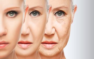 الصورة: الصورة: علماء صينيون يطورون علاجاً جينياً يؤخر الشيخوخة