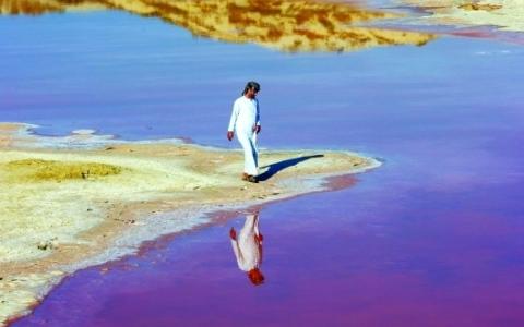 الصورة: الصورة: بحيرة وردية