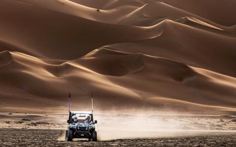 الصورة: الصورة: صحراء ليوا  ذهب فوق الرمال