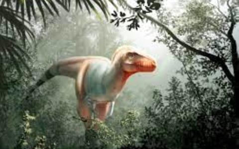 الصورة: الصورة: التيرانوصورات تنمو على حساب ديناصورات أصغر حجماً