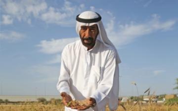 الصورة: الصورة: بالفيديو.. مواطن يختبر 44 نوعاً من القمح في مزرعته خلال 40 عاماً