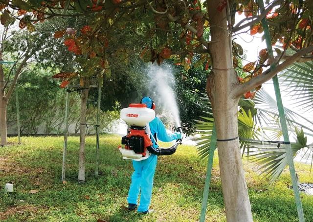 «تدوير» يكثّف جهوده لمكافحة البعوض والذباب