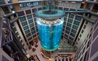 الصورة: الصورة: يحتوي على مصعد داخلي.. «أكوادوم» أطول برج للأسماك في العالم