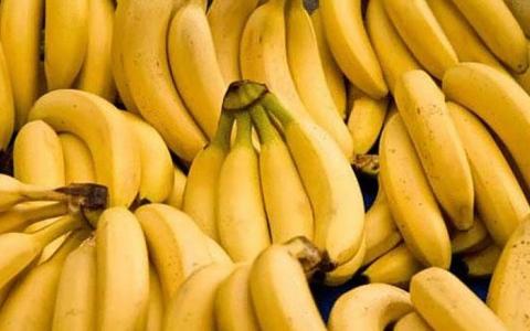 الصورة: الصورة: البشرية قد تُحرم من أكل الموز لهذا السبب