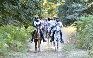 الصورة: الصورة: الإمارات تتقدم المشاركين في مونديال إيطاليا للقدرة