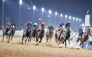 الصورة: الصورة: تعاون بين الإمارات والسعودية والبحرين لتطوير سباقات الخيل