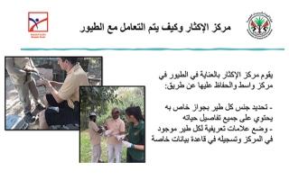 الصورة: الصورة: «ناشئة الشارقة» يحلقون افتراضياً مع الطيور في سماء الإمارات