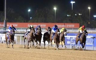 الصورة: الصورة: موسم سباقات الخيل  في الإمارات 10/ 10