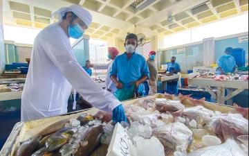 الصورة: الصورة: أزمة «كورونا» أثبتت أهمية الصياد المحلي