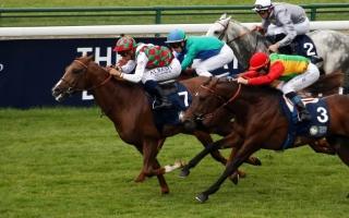 الصورة: الصورة: كأس رئيس الدولة للخيول العربية «28» تنطلق في أمريكا اليوم
