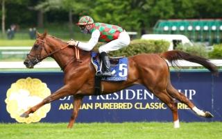الصورة: الصورة: «هتال» بطل كأس رئيس الدولة للخيول العربية في فرنسا