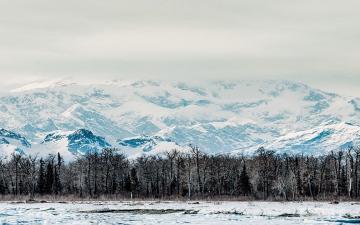 الصورة: الصورة: إدارة بايدن تعلق أنشطة التنقيب عن النفط والغاز بمحمية في ألاسكا