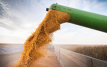 الصورة: الصورة: «فاو»: 12% ارتفاع كلفة واردات الغذاء في 2021
