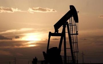 الصورة: الصورة: وكالة الطاقة: الطلب على النفط في 2022 سيتجاوز ما قبل كورونا